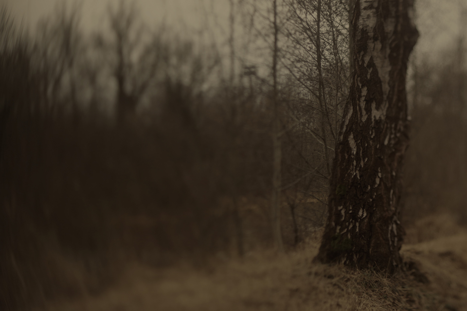 soulscapes_01