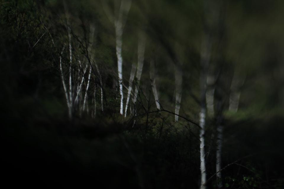 soulscapes_6